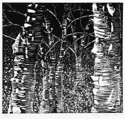 LarryCorrellBirchTrees