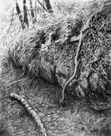 Leah Drake--Swamp Rabbit Trail